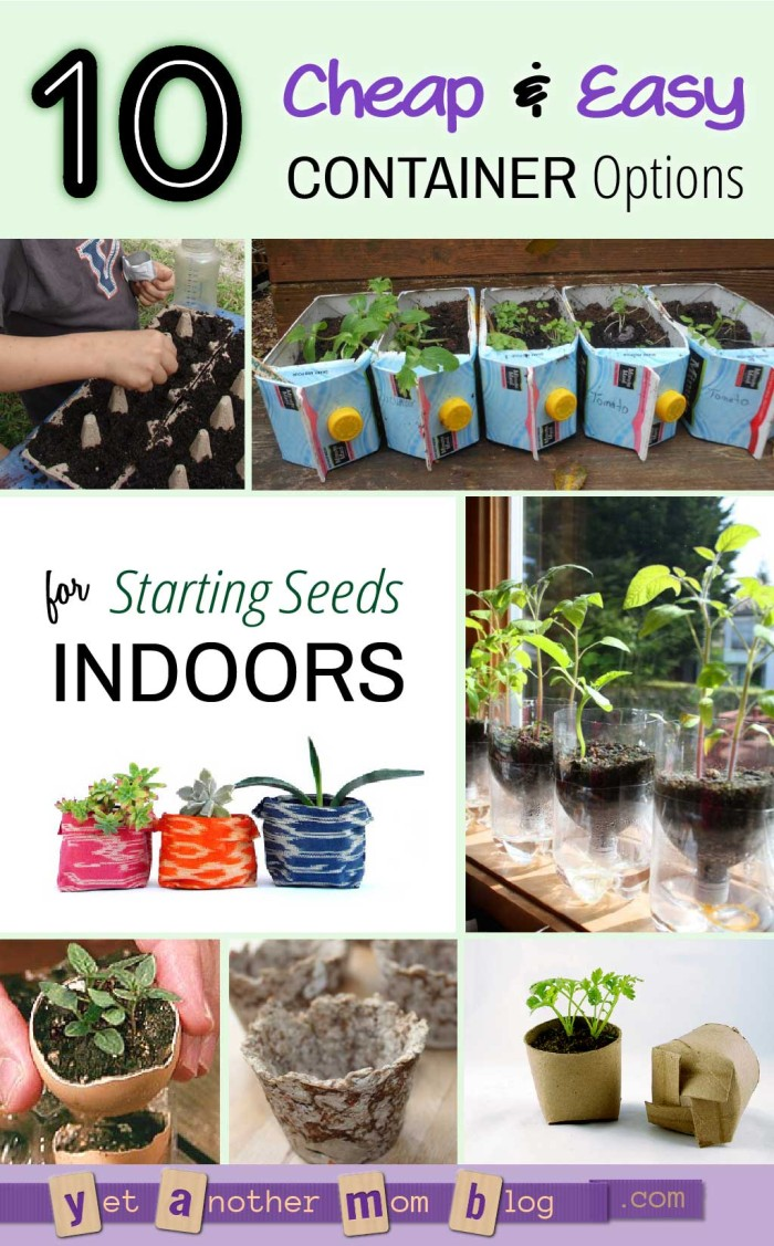 Ten Cheap and Easy Containers for Starting Seeds Indoors - who would have thought of #7?!
