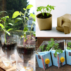 seed starter pots at Yet Another Mom Blog