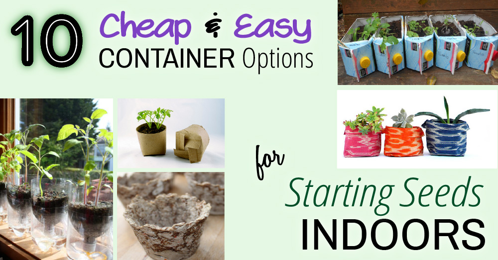 DIY Cheap & Easy Seed Starter Containers