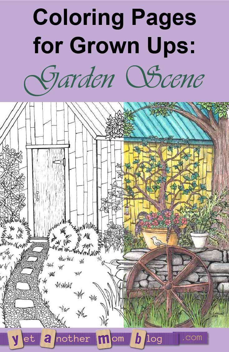 Coloring Pages for Grown Ups: Garden Scene