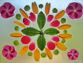 live-laugh-and-learn-make-your-own-flower-petal-stained-glass-design