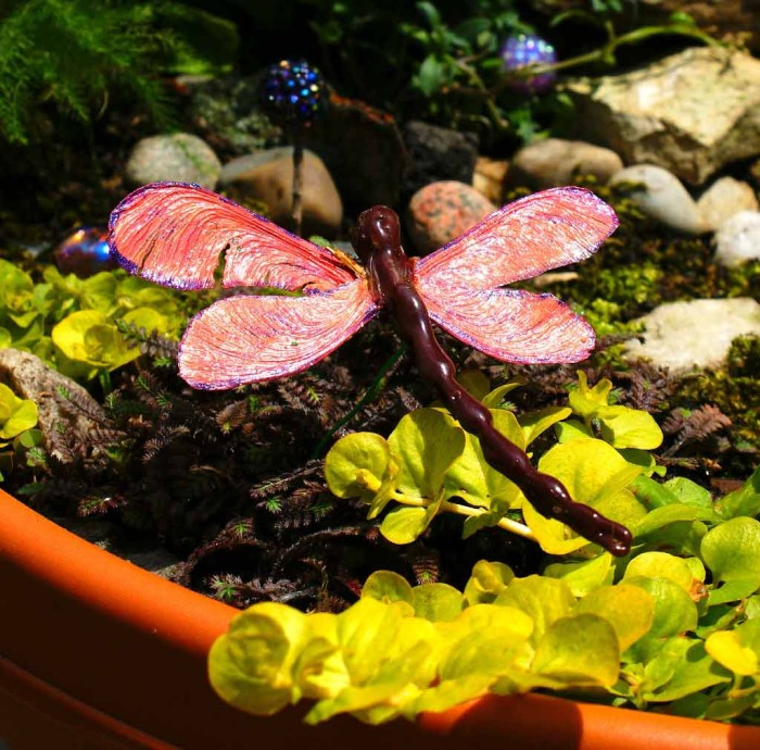 Dragonfly in fairy garden