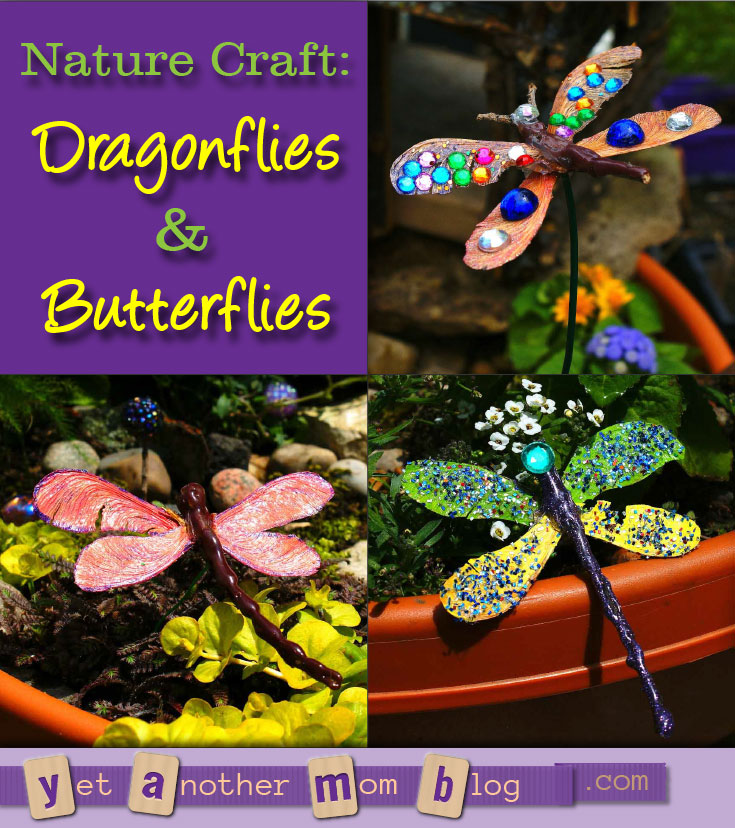 Nature Craft: Dragonflies & Butterflies - can you believe these are made from stuff lying in your yard? Get the kids outside to clean up the yard and then make this craft!