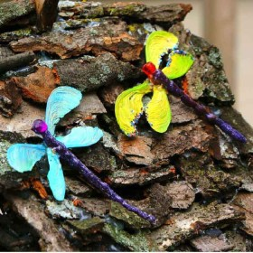 Nature Craft: Dragonflies and Butterflies