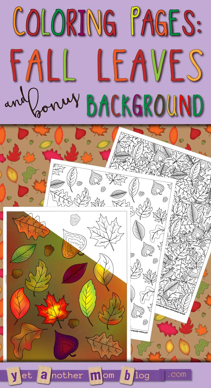 Easy, Medium, and Hard Fall Leaves Coloring Pages plus bonus autumn leaves background