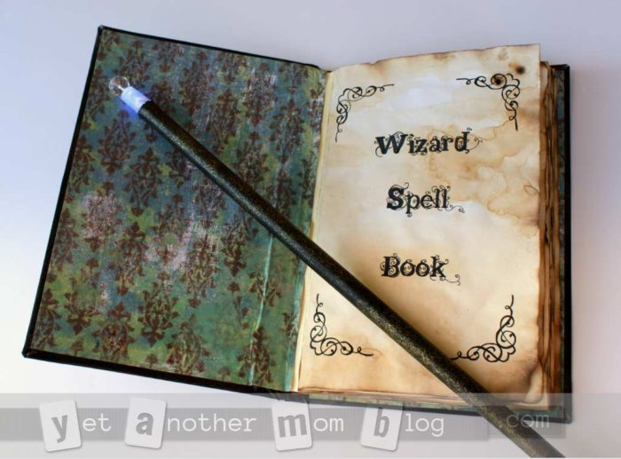 wand-and-spell-book