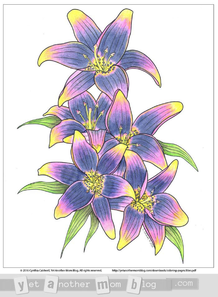 Colored lilies coloring page