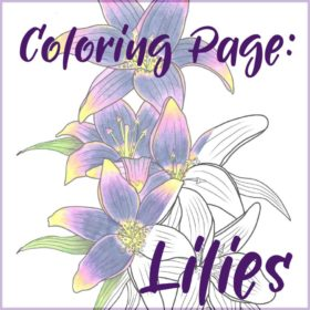 Coloring Page: Lilies