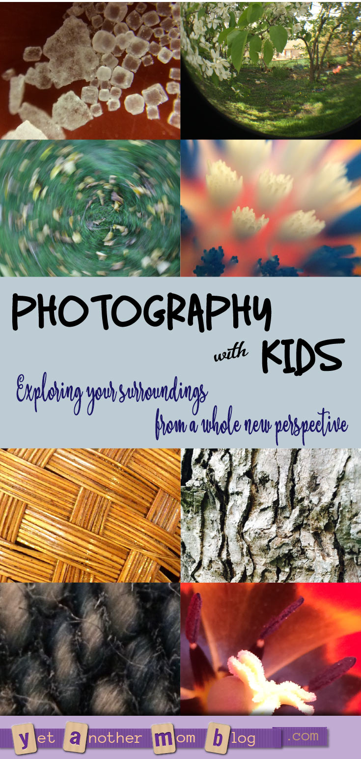 Photography with Kids - Exploring your surroundings from a whole new perspective. We especially love macro photography (super close-ups). And we found a cheap gadget to make this even better!